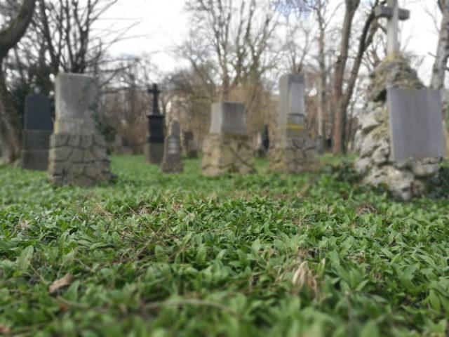 Quarantänekasten Münchner Friedhof